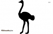 Baby Ostrich Silhouette Image