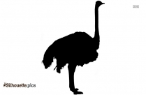 Running Ostrich Silhouette