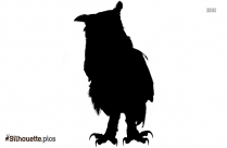 Owl Bird Silhouette Image And Vector