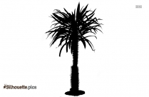 Willow Tree Silhouette Drawing