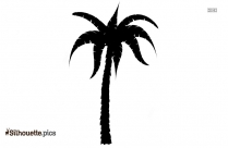 Palm Tree Silhouette Picture