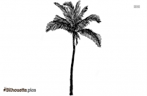Green Palm Tree Silhouette Image