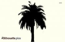Palm Tree Silhouette Image