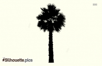 Palm Tree Silhouette No Background
