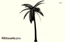 Trophical Palm Tree Silhouette