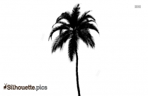 Banana Tree Silhouette Image