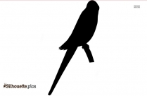 Eagle With Caged Nightingale Bird Clip Art Silhouette