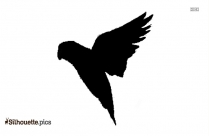 Love Birds Images Silhouette