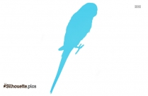 Wren On Branch Clipart Silhouette Clipart