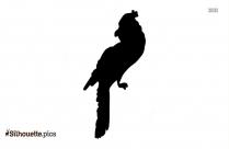 Seagull Clipart Silhouette