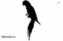 Dodo Bird Black And White Silhouette