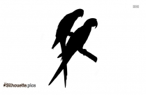 Parrot Image Silhouette