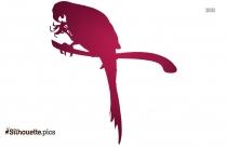 Cassowary Clipart Silhouette