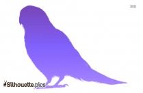 Eagle Sitting Silhouette