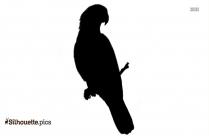 Circus Bird Parrot Silhouette