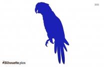 Parrot Beak Silhouette Vector