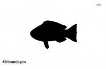 Cartoon Fish Silhouette Icon