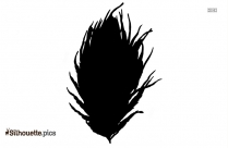 Peacock Feather Vector Png
