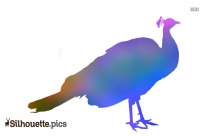 Pigeon Silhouette Png