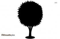Tree Drawing Silhouette Image Vector