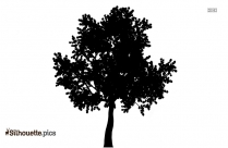 Apple Orchard Symbol Silhouette