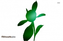 Peony Flower With Bud Silhouette