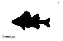 Cartoon Fish Drawing Silhouette