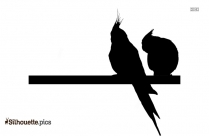 Cute Parakeet Silhouette Picture