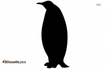 Chinstrap Penguin Picture Silhouette