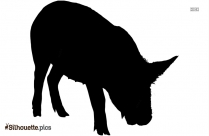 Cartoon Pig Silhouette Free Image