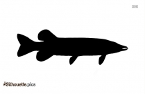 Mullet Fish Silhouette Free Vector Art