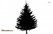 Christmas Tree Silhouette Image And Vector
