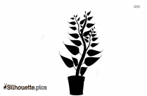 Plant in Pot Silhouette Image
