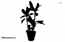 Flowering Plant Vase Silhouette