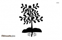 Cartoon Plant With Roots Silhouette