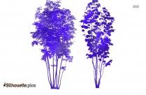 Plants Decoration Silhouette Illustration