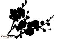 Plum Blossom Tree Silhouette Image And Vector