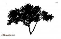 Free Tree Drawing Silhouette