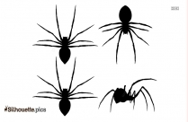 Poisonous Spiders Silhouette