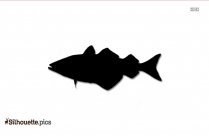 Rainbow Trout Fish Silhouette Image