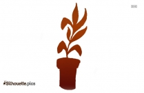 Tropical Plant Silhouette Illustration
