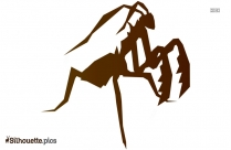 Cicada Wings Silhouette Image And Vector