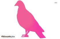Cartoon Cuckoo Bird Silhouette