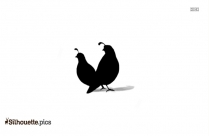Bird Black And White Silhouette Image