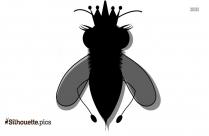 Queen Bee Silhouette Free Vector Art