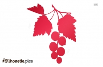 Berry Fruits Silhouette Images