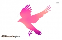 Bird Flying Silhouette Clipart