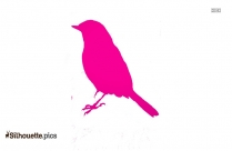 Parakeet Silhouette Vector And Graphics