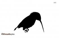 Pigeon Bird Silhouette