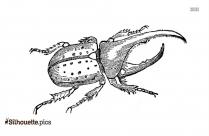 Free Boxelder Bug Silhouette